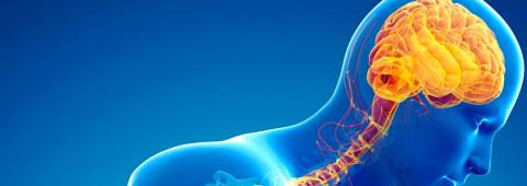 Обследование пациентов с болезнью Паркинсона